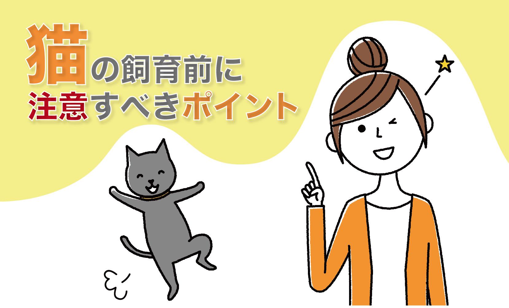 猫の飼育前に注意すべきポイント